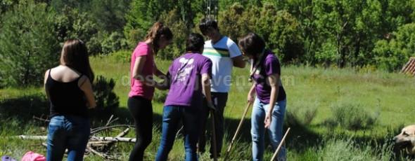 Proyectos - CIUDADES VERDES