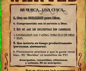 Noviazgo - SE BUSCA... UNA CHICA...